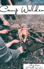 Camp Walden || 5SOS by heyjude00