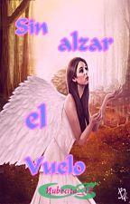 Sin Alzar el Vuelo by nubecita_12