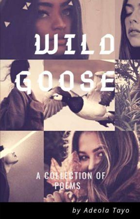 Wild Goose  by AdeolaTayo