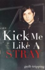 Kick Me Like A Stray [Sequel to TMIAA, Frerard] by guilt-tripping