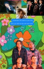 5 Seconds Of Summer Perferences by LawleyWebber