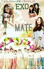 Mate (EXO love story) by StrawberryLover_27
