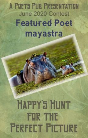 Happy's Hunt for the Perfect Picture by PoetsPub