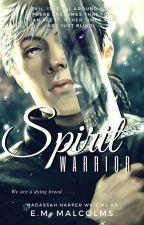 SPIRIT WARRIOR by HaddieHarper
