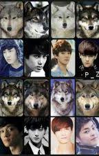 Exo  WOLF by yaren__12