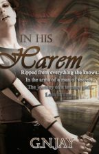 In His Harem by serenity_0