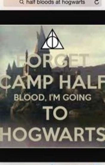 Half-bloods at Hogwarts {currently under major editing}