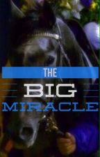 """The Big Miracle(Sequel to """"The Super Filly"""") by wavesofbeauty"""