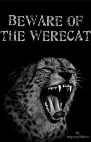 Beware of the Werecat