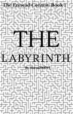 The Labyrinth  by Storm200794