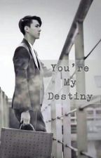 You're My Destiny (Sehun Exo Fanfic) by dksdks