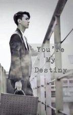 You're My Destiny (Sehun Exo Fanfic) by dksdks