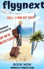 Why Flights To Florida Are Way Cheaper Than You Think? by FlyyNext