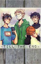 ~Till the End~ A Dream Team fanfic [Dream, George, Sapnap X Reader] by Jamie_1132