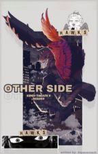 other side   hawks x reader  by japansroach