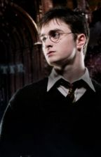 Harry Potter x reader - Year 5 by quidditch_queen06