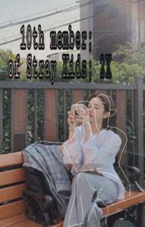 9th member; of Stray Kids; x2 by cuty-minmin