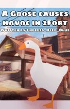 A Goose causes havoc in 2fort by Endless_Deep_Blue