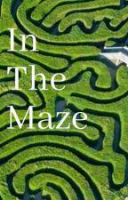 In The Maze by SpookyGayBoi