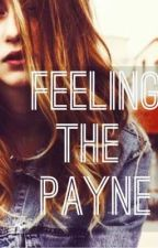 Feeling The Payne by louistripes