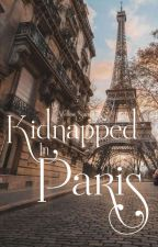 Kidnapped In Paris by yellowsummers3