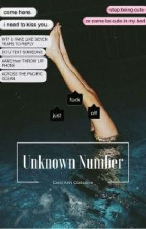 Unknown Number {L.S}  (French Translation) by Sarouneuh