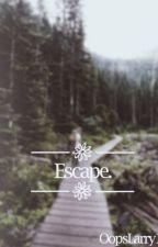 Escape-Larry OS by beyxndwxrds