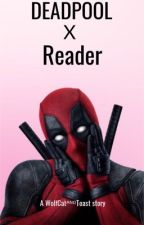 Deadpool ˣ Reader by WolfCatAndToast