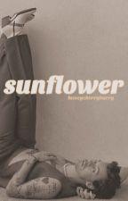 sunflower | h.s. by honeycherryharry