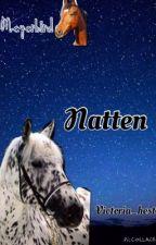 1. Natten (Norsk hesteserie) ferdig by victoria_hest