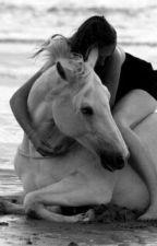 Cowgirl and Badboy? by Elisastory