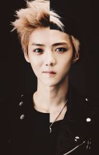 I Can't Find You (HunHan) by Lulu-luhan