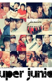 Super Junior Imagines by MissMonicaLee