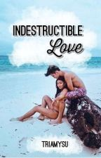 Indestructible Love [EDITING] by triamysu