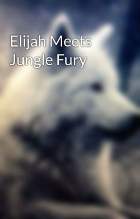 Elijah Meets Jungle Fury by PoopHead231