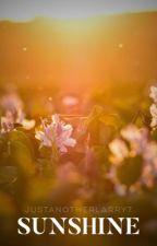Sunshine (larry stylinson) by justanotherlarry7