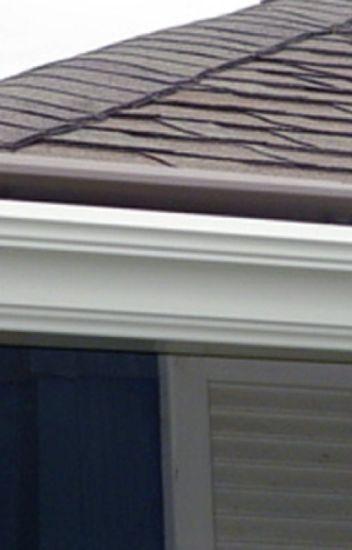 Roof Replacement Repair In Raleigh Nc Gonzalez Painters Wattpad