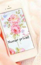 Apelul cu numar privat by daniana25