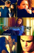 Counting days || Stelena by 55rose
