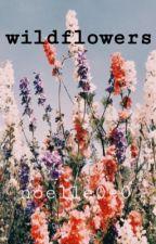 wildflowers by Noelle0-0