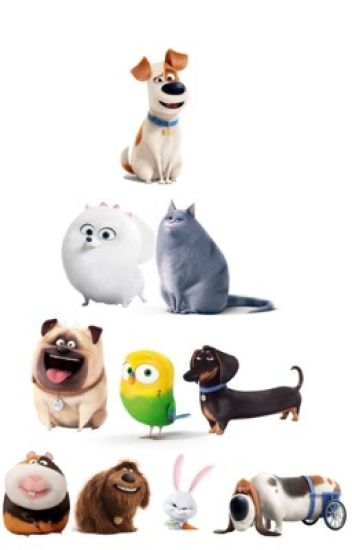 The Secret Life Of Pets Characters Favorite Directv Commercials 1222gabe Wattpad