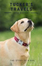 Tucker's Travels: The Story of a Dog by RoseNoctua