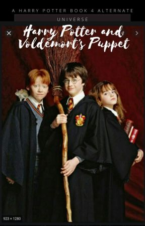 Harry Potter and Voldemort's Puppet by Donutpatch