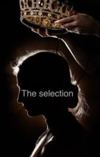 THE SELECTION (pjo) by nc_bby1