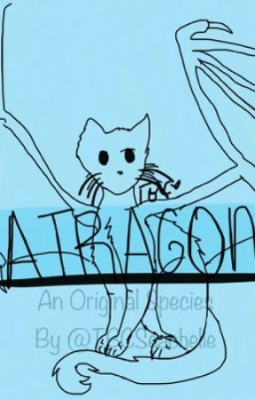 Catragons: An Original Species by TBCSeachelle