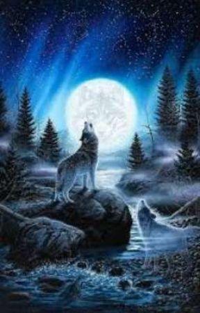 Werewolf rp  by PoetTheBigPhilip0503