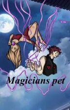 Magicians Pet (🔞Hisoka Smut🔞)  by Clown4Hisoka