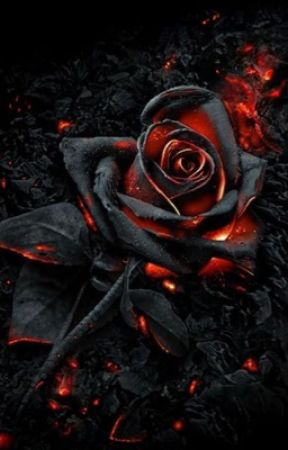 Midnight love, Oc x Macbeth/ Midnight by roslinalycan
