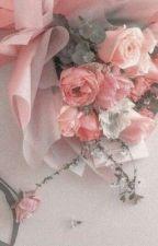 Rose Petals ❁ warrior cats info. by chai_petals