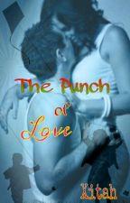 The Punch of Love by izaberudesu